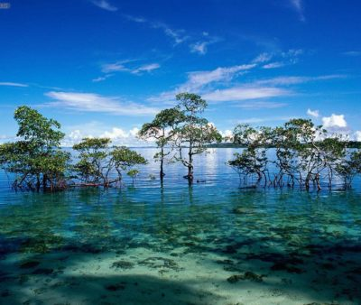 Havelock-Island