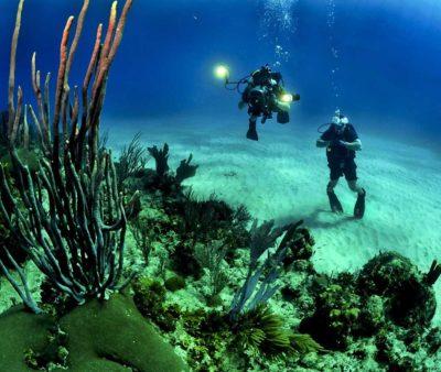 North-Bay-Island-(Coral-Island)